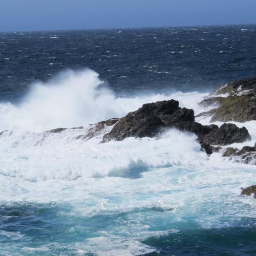 Wild West Coast Waves Uculet B.C.
