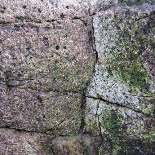 Rocks in Tofino